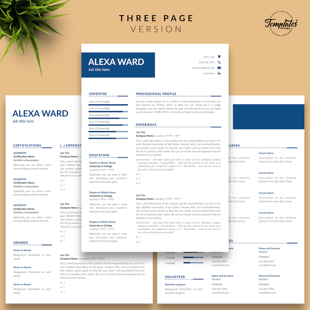 Professional CV for Word - Alexa Ward 04 - Three Page Version