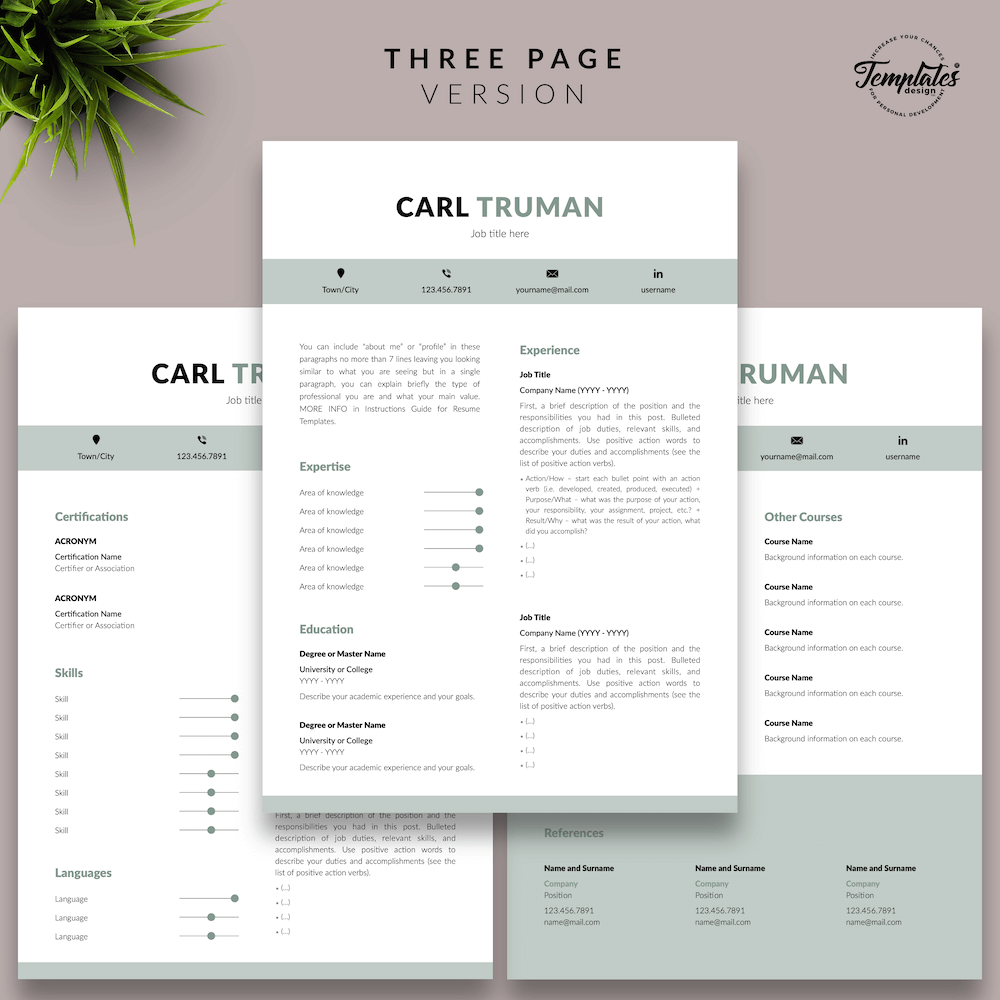 Professional Resume CV Template - Carl Truman 04 - Three Page Version - New version