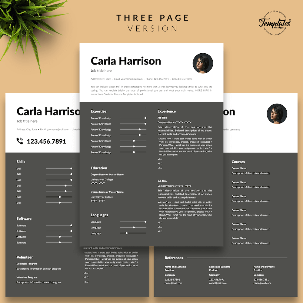 Resume Template for Accountant - Carla Harrison 04 - Three Page Version - New version