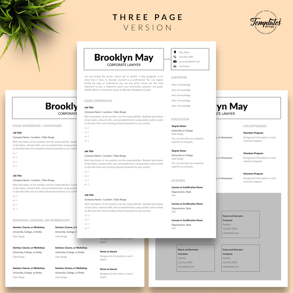 Corporate Lawyer Resume - Brookyn May 04 - Three Page Version - New version